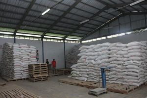 Resi Gudang Gabah dan Beras Diproyeksi Tumbuh di  Semester II