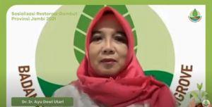 Sinergikan Program, BRGM Adakan Sosialiasi Restorasi Gambut di Jambi