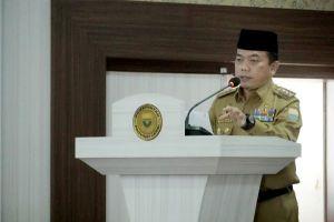 Gubernur Tekankan Sinergitas dan Koordinasi Atasi Karhutla